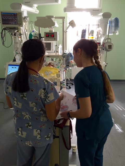 Mary Ann teaching local nurse Nadia